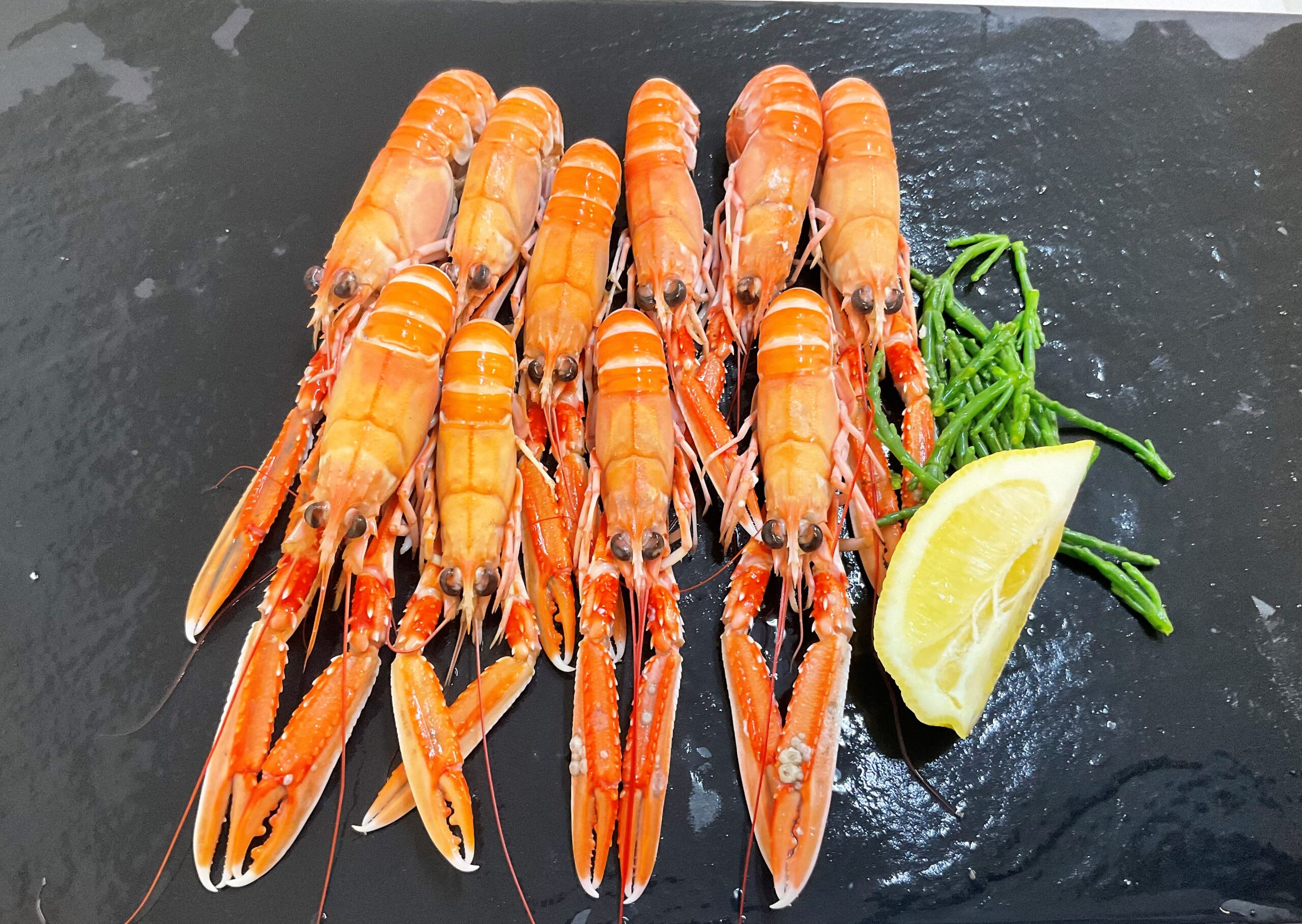 Cooked Langoustines